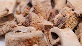 La medicina SangBaiPi dell'erba o la corteccia della radice o di Mori Cortex del gelso bianco gira e fa una pausa archivi video