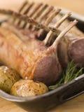 La meilleure extrémité de l'agneau anglais de source avec Rosemary Image libre de droits