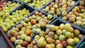 La mela rossa e verde fruttifica in un supermercato fondo fresco del deposito delle mele immagini stock libere da diritti