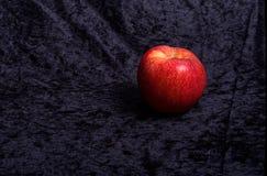 La mela rossa luminosa sembra grande fotografia stock