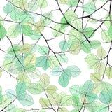 La menthe d'été et la forêt tropicale bleue laisse à humeur lumineuse le modèle sans couture pour le tissu de fashoin, livre de p Photo stock