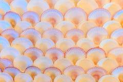 La mer écosse le fond Photographie stock