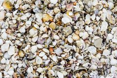 La mer écosse la texture de fond image libre de droits