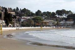 La Mer Adriatique, la plage et l'Ulcinj regardent (Monténégro, l'hiver) images libres de droits