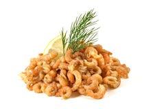 La Mer du Nord - crevettes atlantiques photo stock