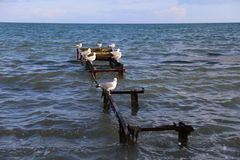 La Mer Noire Photo libre de droits