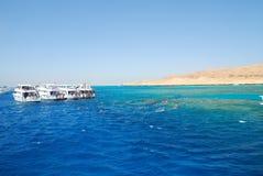 la Mer Rouge de l'Egypte Photos libres de droits