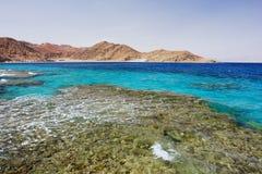 La Mer Rouge, Egypte Images libres de droits