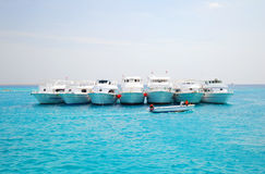 La Mer Rouge en Egypte photos libres de droits