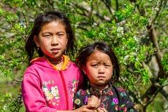 La MESETA de MOC CHAU, VIETNAM - 5 de febrero de 2014 - los niños étnicos preciosos no identificados se relaja Imágenes de archivo libres de regalías