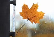 La meteorologia, le previsioni e l'autunno sopravvivono il concetto di stagione Immagini Stock Libere da Diritti