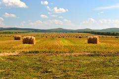 La meule de foin sur les prairies Image stock