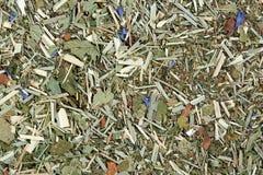 La mezcla de Honeybush, zarzamora del té se va, hierba de limón, menta fresca fotos de archivo libres de regalías