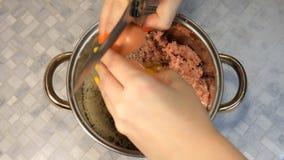 La mezcla de la mujer en cuenco puso a tierra la carne con los huevos, cebolla destrozada de la carne de vaca y de cerdo almacen de metraje de vídeo