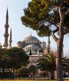 La mezquita azul, Estambul Foto de archivo