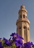 La mezquita magnífica Imagenes de archivo