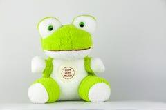 La mia bambola Fotografie Stock