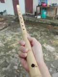 La mia flauto Fotografia Stock Libera da Diritti