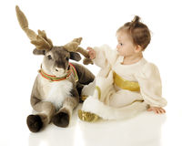 La mia renna Immagine Stock