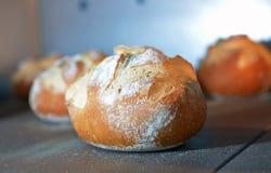 La miche de pain est faite cuire au four image libre de droits
