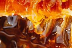 La miel ambarina en panales fluye abajo lentamente de amarillo Fotografía de archivo libre de regalías