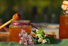 La miel en un vidrio sacude y panales de la abeja con las hierbas melíferas de las flores Foto de archivo