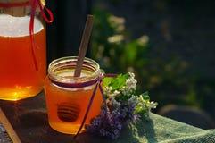 La miel en un vidrio sacude y panales de la abeja con las hierbas melíferas de las flores Foto de archivo libre de regalías
