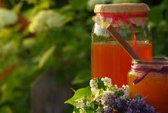 La miel en un vidrio sacude y panales de la abeja con las hierbas melíferas de las flores Fotos de archivo libres de regalías