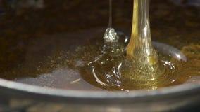 La miel fresca fluye en el buque Parece muy apetitoso Extracción de la miel de la abeja Macro Cámara lenta metrajes