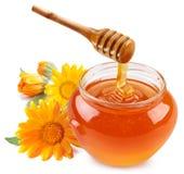 La miel vierte con los palillos en un tarro. Imagen de archivo