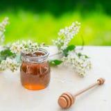 La miel y el acacia florece con un cazo de madera en fondo del jardín Foto de archivo libre de regalías