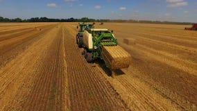 La mietitrebbiatrice di vista aerea riunisce il grano al tramonto Raccolta del campo di grano, stagione del raccolto Bella antenn stock footage