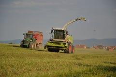 La mietitrebbiatrice falcia il campo, mietitrice che scarica in un rimorchio di trattore Fotografie Stock