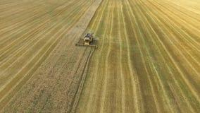 La mietitrebbiatrice riunisce il grano stock footage