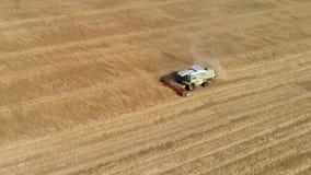 La mietitrebbiatrice riunisce il raccolto del grano Grano che raccoglie i tagli archivi video