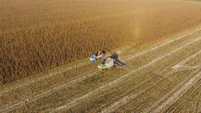 La mietitrebbiatrice versa il grano del cereale nel corpo del camion La mietitrice raccoglie il cereale Fotografie Stock