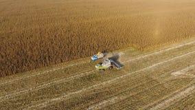 La mietitrebbiatrice versa il grano del cereale nel corpo del camion La mietitrice raccoglie il cereale Fotografie Stock Libere da Diritti