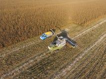 La mietitrebbiatrice versa il grano del cereale nel corpo del camion La mietitrice raccoglie il cereale Fotografia Stock Libera da Diritti