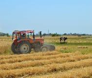 La mietitrice è occupata nel giacimento di grano Immagine Stock Libera da Diritti