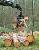 La mietitrice che lavora in una foresta Fotografia Stock