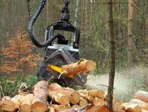 La mietitrice che lavora in una foresta Immagini Stock