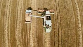La mietitrice effettua i raccolti e versa il grano in un camion Il lavoro di tecnologia nei campi Fotografia Stock