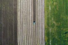 La mietitrice effettua il raccolto in un campo accanto ad un campo verde con cereale l'ucraina Siluetta dell'uomo Cowering di aff Fotografia Stock Libera da Diritti