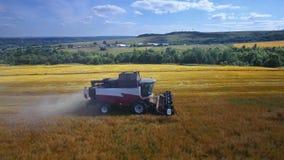 La mietitrice moderna del trattore dell'associazione di velhice del raccolto effettua i raccolti nel campo, orbita aerea della mo stock footage