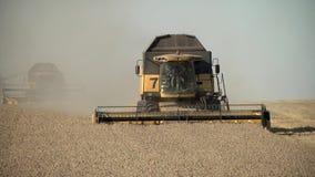 La mietitrice raccoglie il grano maturo nel campo stock footage