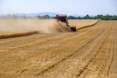 La mietitrice riunisce il raccolto del grano Fotografia Stock Libera da Diritti
