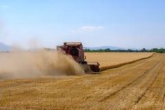 La mietitrice riunisce il raccolto del grano Immagini Stock Libere da Diritti
