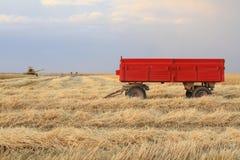 La mietitrice sta funzionando nel campo durante il raccolto Immagini Stock Libere da Diritti