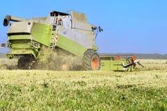 La mietitrice sta funzionando nel campo e la cicogna sta cercando l'alimento vicino Fotografia Stock Libera da Diritti