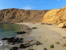 La Mina Beach i Paracas den nationella reserven, Peru royaltyfri bild